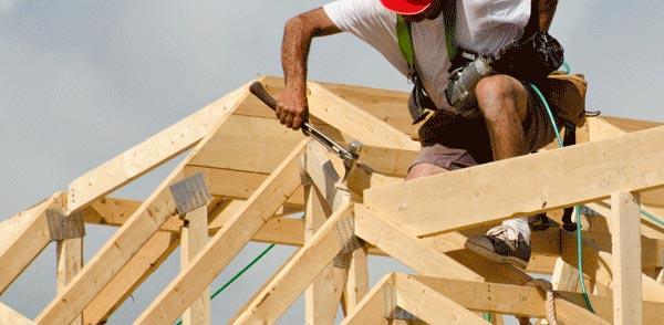 costruzione di legno